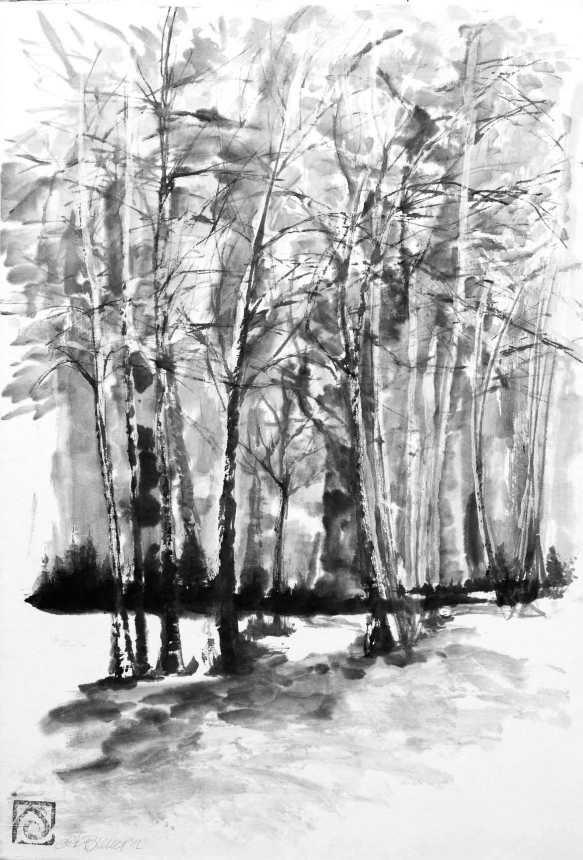 Bosco di betulle china su carta di riso 35x51cm 2012 _72 dpi